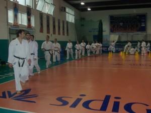raion karate