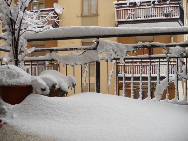 nevicata4-4-febbrraio-2012
