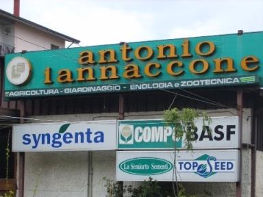 antonio-iannaccone-srl-foto-2