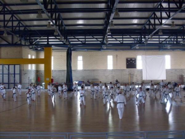 raion-karate-1