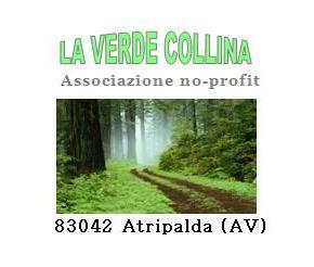 la-verde-collina-associazione logo
