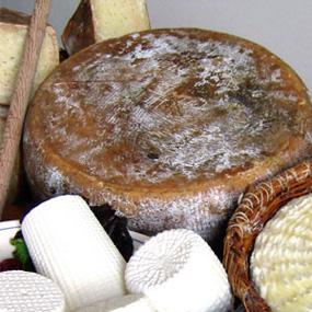 tracciabilita-prodotti-tipici-formaggi-irpini