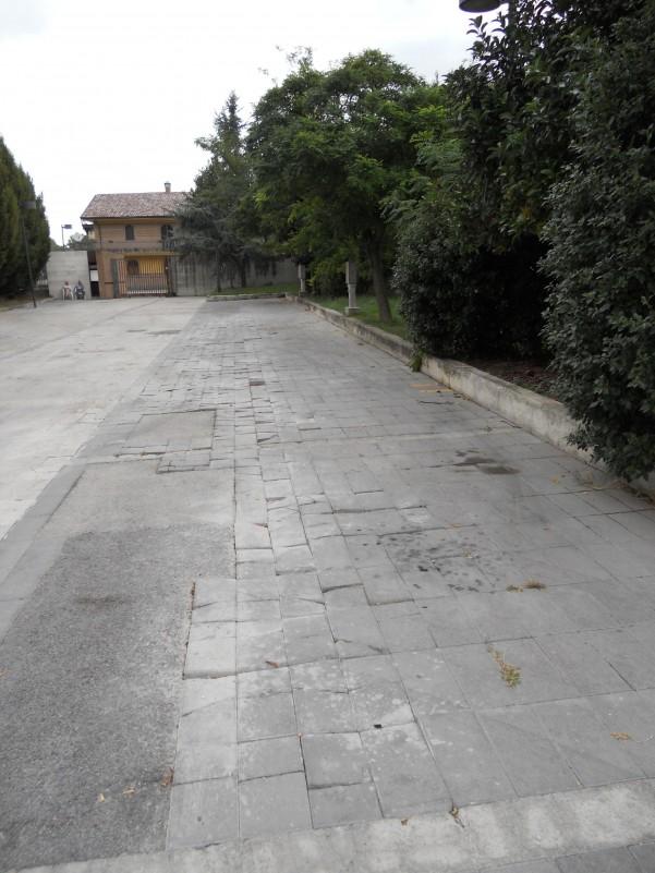 parco-acacie-pavimentazione-sconnessa