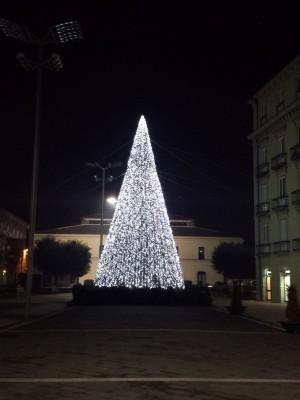alberro-di-natale-in-piazza-umberto