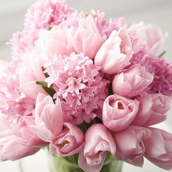 fiori-per-nascita_