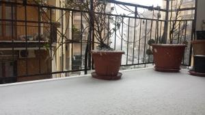 Neve febbraio 2015 2