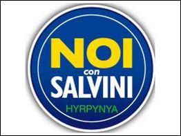 noiconsalvini-hyrpynya