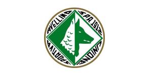 nuovo logo Us Avellino 1912