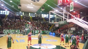 Scandone-Pesaro 4