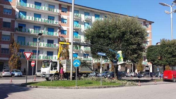 Potatura lecci in piazza Umberto