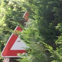 cartelli-stradali-nascosti