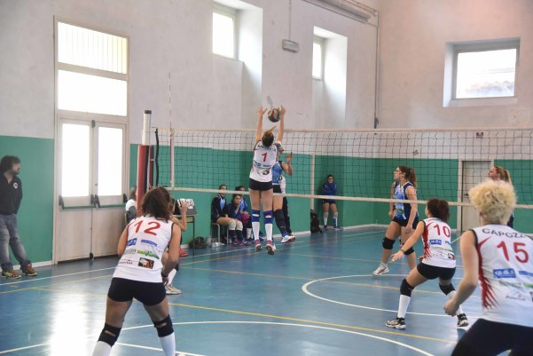 Green volley - the marcello's_4