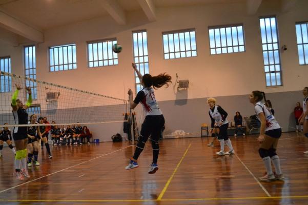 caudium - Green Volley