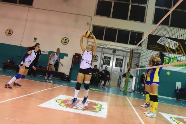 Green Volley - Montoro_8
