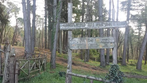 Parco San Gregorio1
