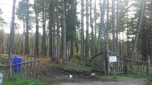 Parco San Gregorio2