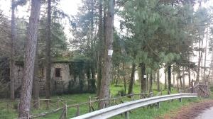 Parco San Gregorio3