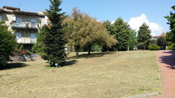 Villa comunale, si taglia l'erba