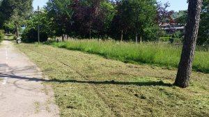 Villa comunale, si taglia l'erba3